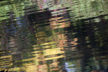 Abstraction of water reflecting fall leaves