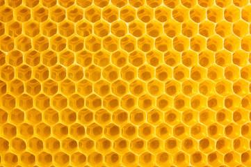 Honigwaben Hintergrund