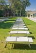 Row of sunbeds