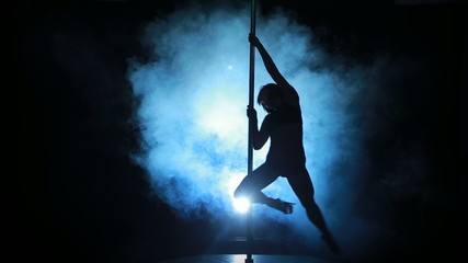 13of23 Silhouette of a sexy female pole dancing