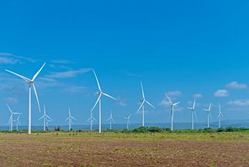 Wind power farm