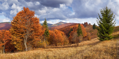 Beautiful Autumn in the mountains