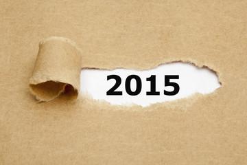 Torn Paper 2015