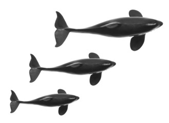 Toy Whales