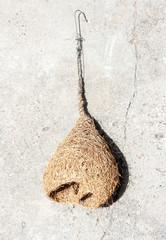 dry bird net on cement floor