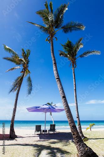 canvas print picture Unter den Palmen