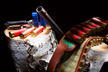 Gun with hunting cartridges