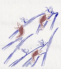 鯉の滝登り1