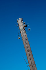 Old telegraph pole