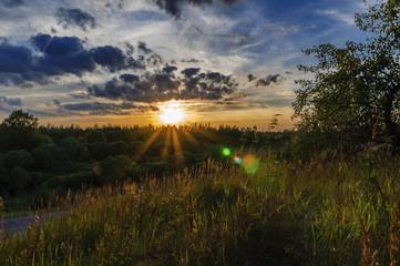 Закат над лесом. 13.08.2014