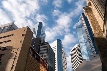 Hochhäuser in Brisbane