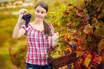 Woman enjoying in her vineyard