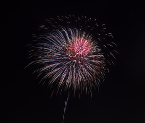 colorful firework from japanese traditional summer festival