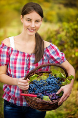 vintner with basket of grapes