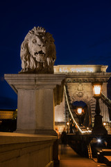 Lion statue on chain bridge Budapest Hungary at night.