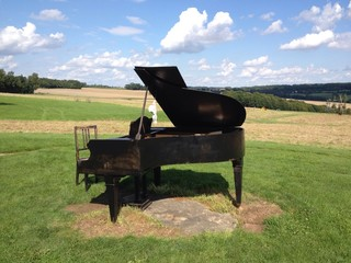 Piano dans un champ