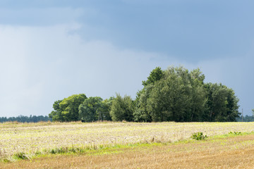 Rural landscape before storm in Central Poland, Europe