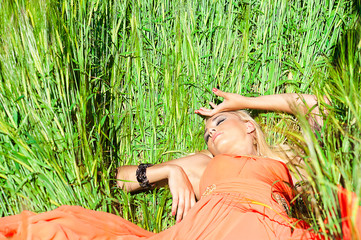 pretty woman in orange dress lying on the immature wheat