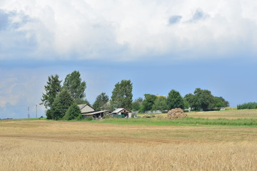 Rural landscape at sunny day in Central Poland, Europe