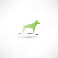 Dog green symbol