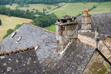 Roofs of Turenne