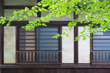 Window of the Japanese house
