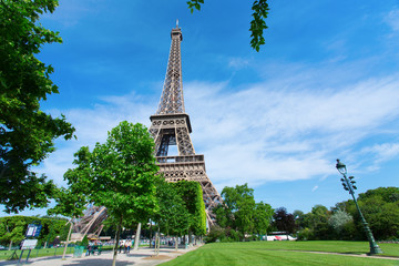 Eiffel Tower in Paris with green grass, blue sky and white cloud