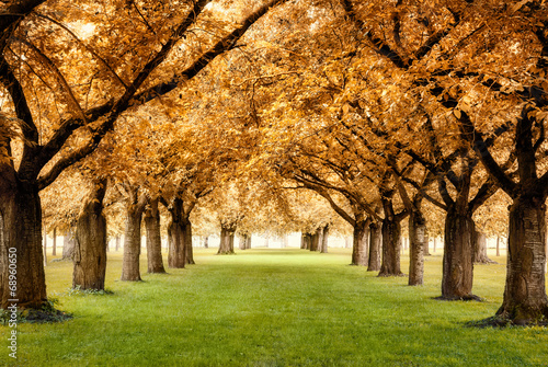 Zdjęcia na płótnie, fototapety na wymiar, obrazy na ścianę : Paradiesische Herbstszene