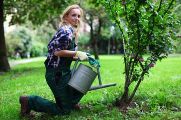 junge Gärtnerin gießt Strauch