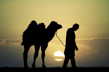bedouin in the desert with camel