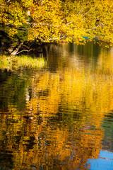 紅葉のオンネトー湖岸