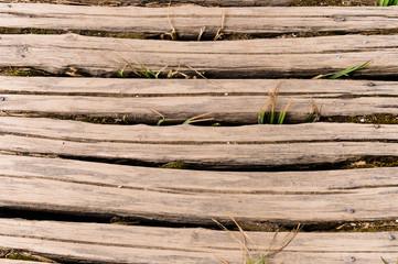 Travi di legno, texture