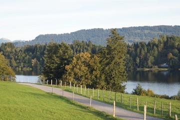 Niedersonthofner See