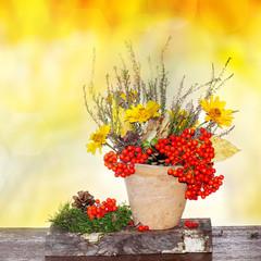 Autumn decoration in pot