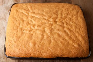 cake sponge in the baking tray