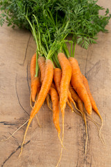 fresh carrots on wooden surface