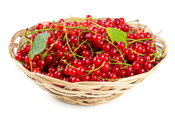 red currant berries in a basket
