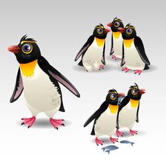 cartoon penguins