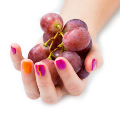 Young female hand with branch of red grape