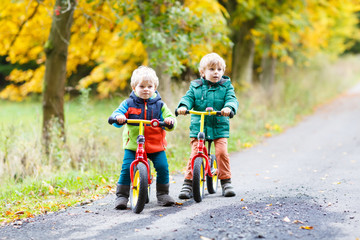 Two little sibling boys having fun on bikes in autumn forest.