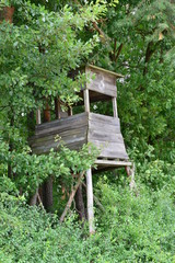 Hunting tower on the edge of the forest.