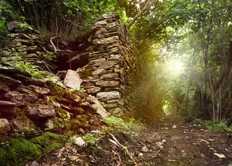 Waldweg mit alter Mauer im Sonnenlicht