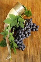 Brush ripe sweet grapes with a traditional drinking horn