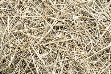 Old straw abstract background