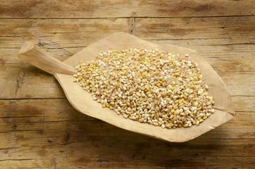 Wheat spelled barley rice y oats மிலன் எக்ஸ்போ 2015