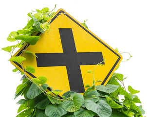 Vine leaves, weeds grew up and choked intersection signs