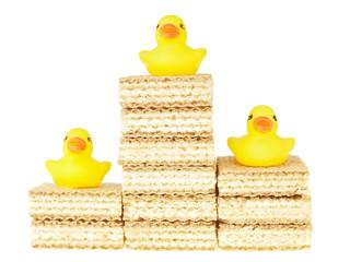 top happy duck