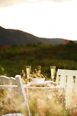 close up romantic dinner in nature