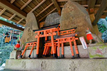 Stone fox statues  and many small torii.