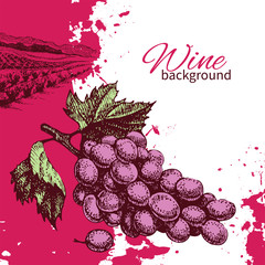 Wine vintage background. Hand drawn illustration.